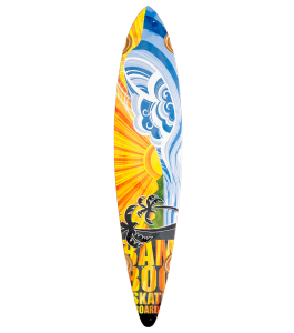 Nirvana Pin Tail Longboard